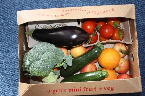 A photo of my first veg box!
